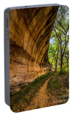 Portable Battery Charger featuring the photograph Butler Wash Wave Formation - Blanding - Utah by Gary Whitton