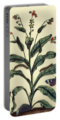 Butterflies, Caterpillars And Plants Plate Vi  Portable Battery Charger