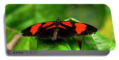 Butterfly #1955 Portable Battery Charger by Chuck Flewelling