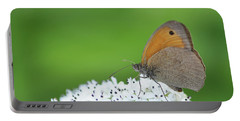 Portable Battery Charger featuring the photograph Butterfly by Bess Hamiti