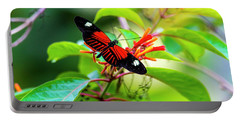 Portable Battery Charger featuring the photograph Butterfly  by David Morefield