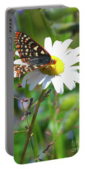 Butterfly On A Wild Daisy Portable Battery Charger