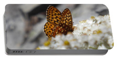 Butterfly On Table Mountain Portable Battery Charger