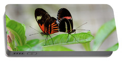 Butterfly Pair Portable Battery Charger