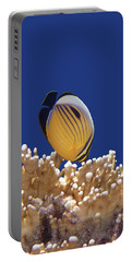 Butterflyfish And Corals Portable Battery Charger