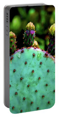Portable Battery Charger featuring the photograph Cacti And Friends by Jessica Manelis