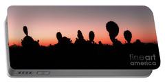 Sonora Desert Sunset Portable Battery Charger