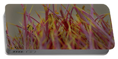 Portable Battery Charger featuring the photograph Cacti by Rod Wiens