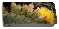 Cactus Amarilla Portable Battery Charger