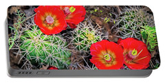 Cactus Bloom Portable Battery Charger