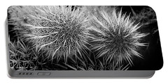 Portable Battery Charger featuring the photograph Cactus Spines by Phyllis Denton