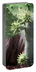Cactus Spring - Macro Plants #3470 Portable Battery Charger by Ella Kaye Dickey