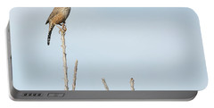 Cactus Wren 7471-101017-1cr Portable Battery Charger