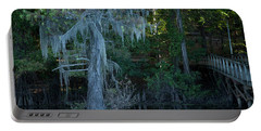 Caddo Lake #1 Portable Battery Charger