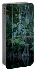 Caddo Lake #4 Portable Battery Charger