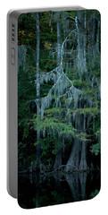 Caddo Lake #4 Portable Battery Charger