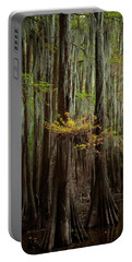 Caddo Lake #5 Portable Battery Charger