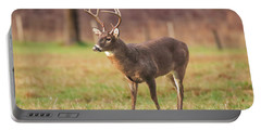 Portable Battery Charger featuring the photograph Cades Cove Buck by Geraldine DeBoer