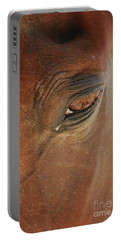 Portable Battery Charger featuring the photograph Cades Cove Horse 20150907_39 by Tina Hopkins