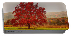 Portable Battery Charger featuring the photograph Cades Tree After The Rain by Geraldine DeBoer