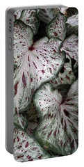 Portable Battery Charger featuring the photograph Caladium Leaves by Debi Dalio