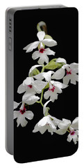 Calanthe Vestita Orchid Portable Battery Charger