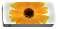 Portable Battery Charger featuring the photograph Calendula Flower by Elena Elisseeva