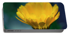 Portable Battery Charger featuring the photograph Calendula by Sharon Mau