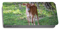 Calf  Portable Battery Charger
