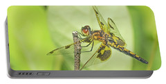 Calico Pennant Portable Battery Charger