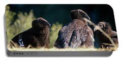 California Condors Portable Battery Charger