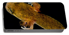 California Giant Salamander Larva Portable Battery Charger by Dant� Fenolio
