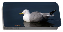 Portable Battery Charger featuring the photograph California Gull by Sharon Talson