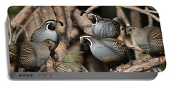 California Quail Covey  Portable Battery Charger