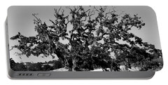 California Roadside Tree - Black And White Portable Battery Charger