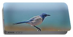 California Scrub Jay Portable Battery Charger