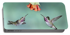 Calliope Hummingbirds Portable Battery Charger