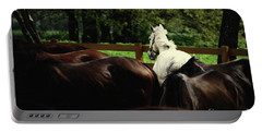 Calm Horses Portable Battery Charger