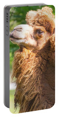 Camel Portable Battery Charger