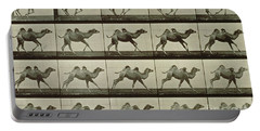 Camel Portable Battery Charger by Eadweard Muybridge