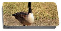 Portable Battery Charger featuring the photograph Canada Goose On A Stroll by Sheila Brown