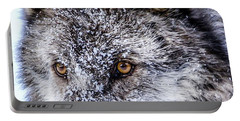 Canadian Grey Wolf In Portrait, British Columbia, Canada Portable Battery Charger