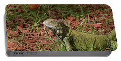 Candid Creeping Common Iguana  Portable Battery Charger by DejaVu Designs