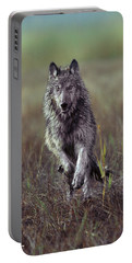 Canis Lupus Portable Battery Charger by Tim Fitzharris