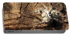 Canopy Jumping Spider Portable Battery Charger