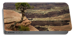 Portable Battery Charger featuring the photograph Canyonlands by Gary Lengyel