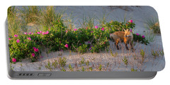 Portable Battery Charger featuring the photograph Cape Cod Beach Fox by Bill Wakeley