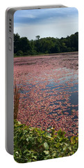 Cape Cod Cranberry Bog Portable Battery Charger
