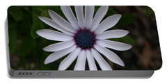 Cape Daisy Portable Battery Charger by Richard Brookes