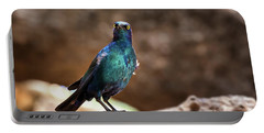 Cape Glossy Starling Portable Battery Charger by Jane Rix